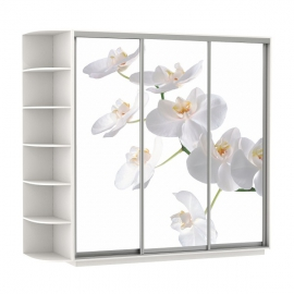 Шкаф-купе Трио-трехдверный Орхидея Белый