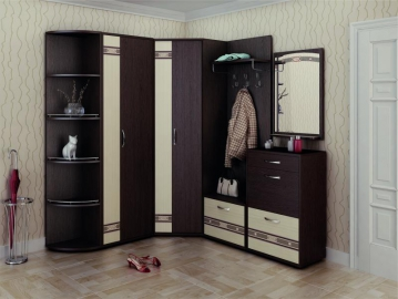 Угловой набор мебели для прихожей Триумф 1
