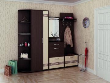 Набор мебели для прихожей Триумф 5